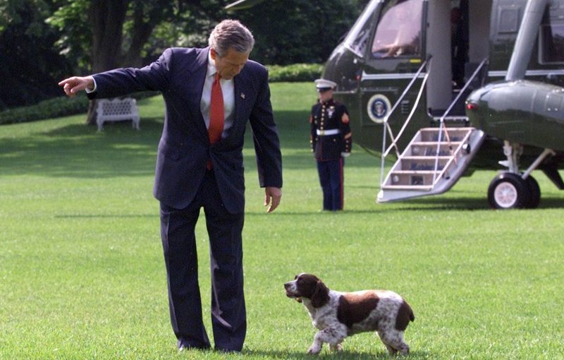 The Presidents Of The United States & The Pets They Owned